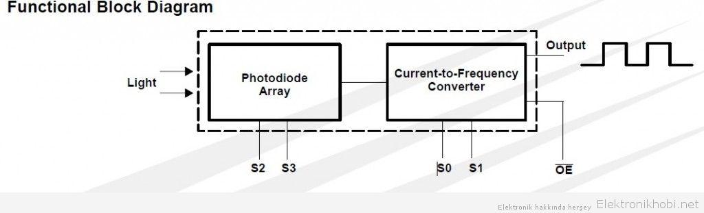 fonksiyonel diagram