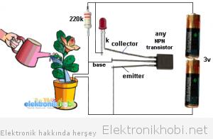 bitki sulama sistemi
